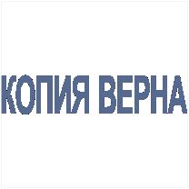 Штамп-Копия-02 38*08